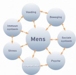 Wisselwerking tussen het lichaam en verschillende omgevingsfactoren - Corinne Pool